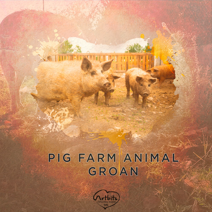 Pig Farm Animal Groan Cover Image