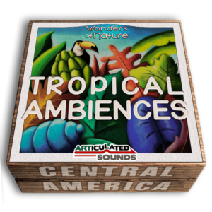 Tropical Ambiences