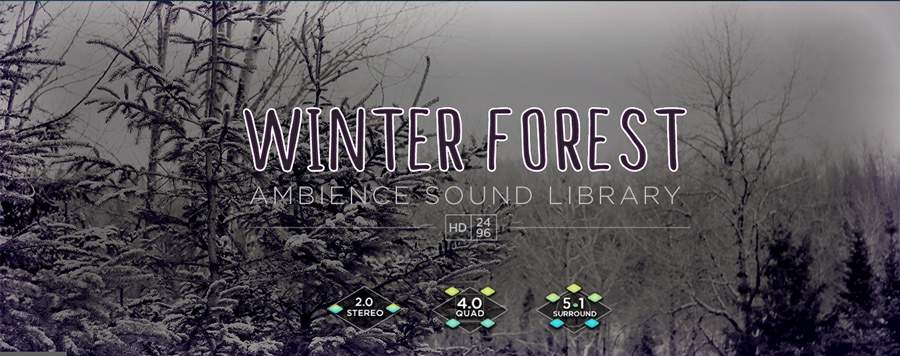 WinterForest_FeatureImage